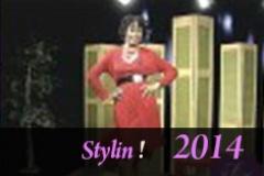 Stylin 10 29 14