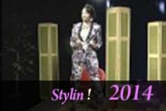 Stylin 11 25 14